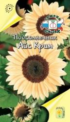 4927 - Подсолнечник Айс Крим - Подсолнечник цветы - Региональный центр Садовод