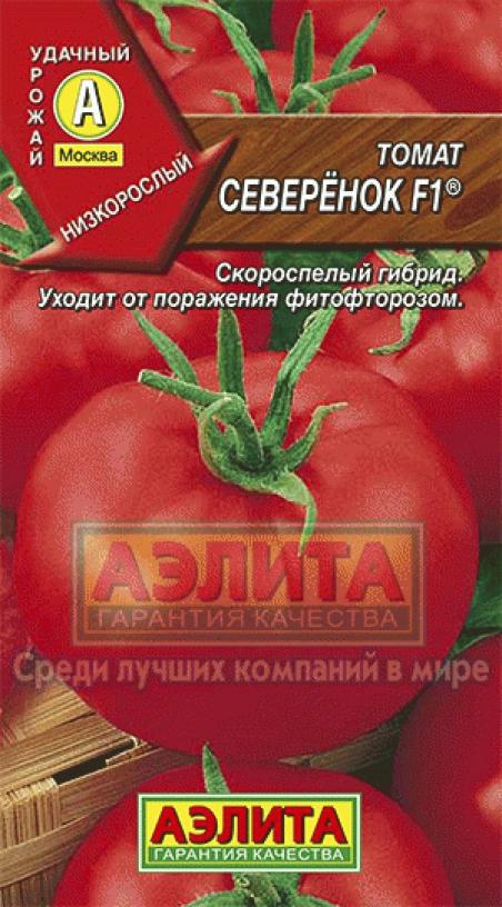 томат северенок отзывы фото