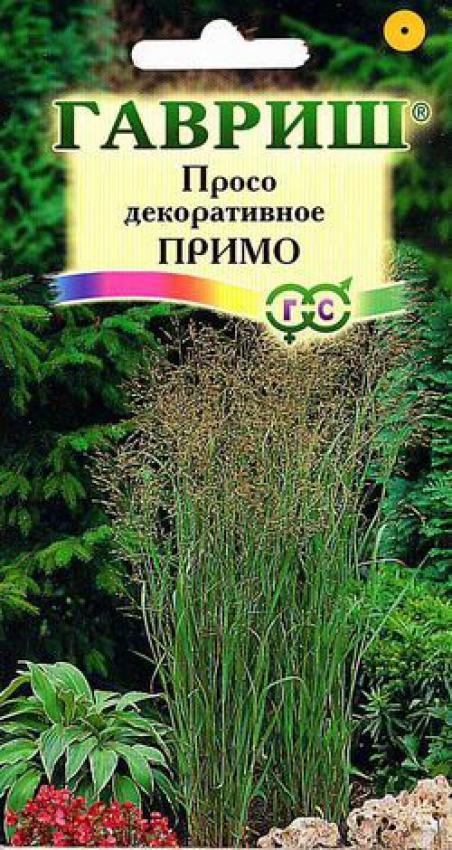 Купить растения почтой: семена, саженцы, луковицы, клубни, плодовые