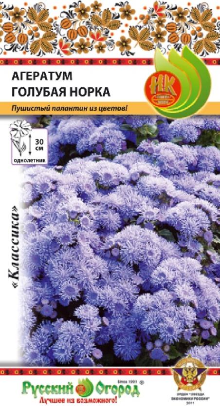 Агератум голубая норка цветов