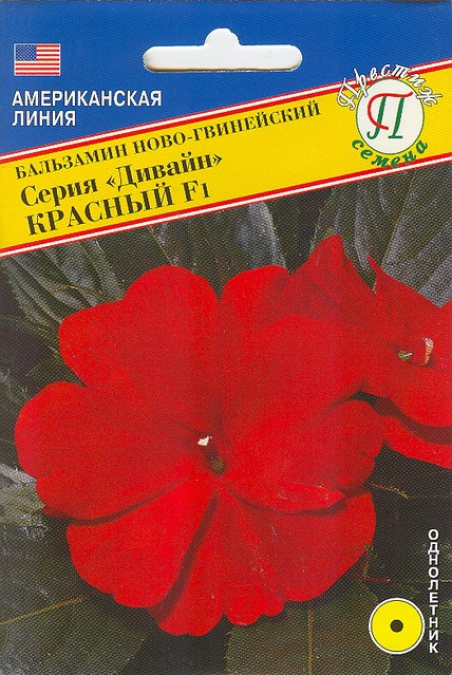 Бальзамин новогвинейский дивайн выращивание из семян 35